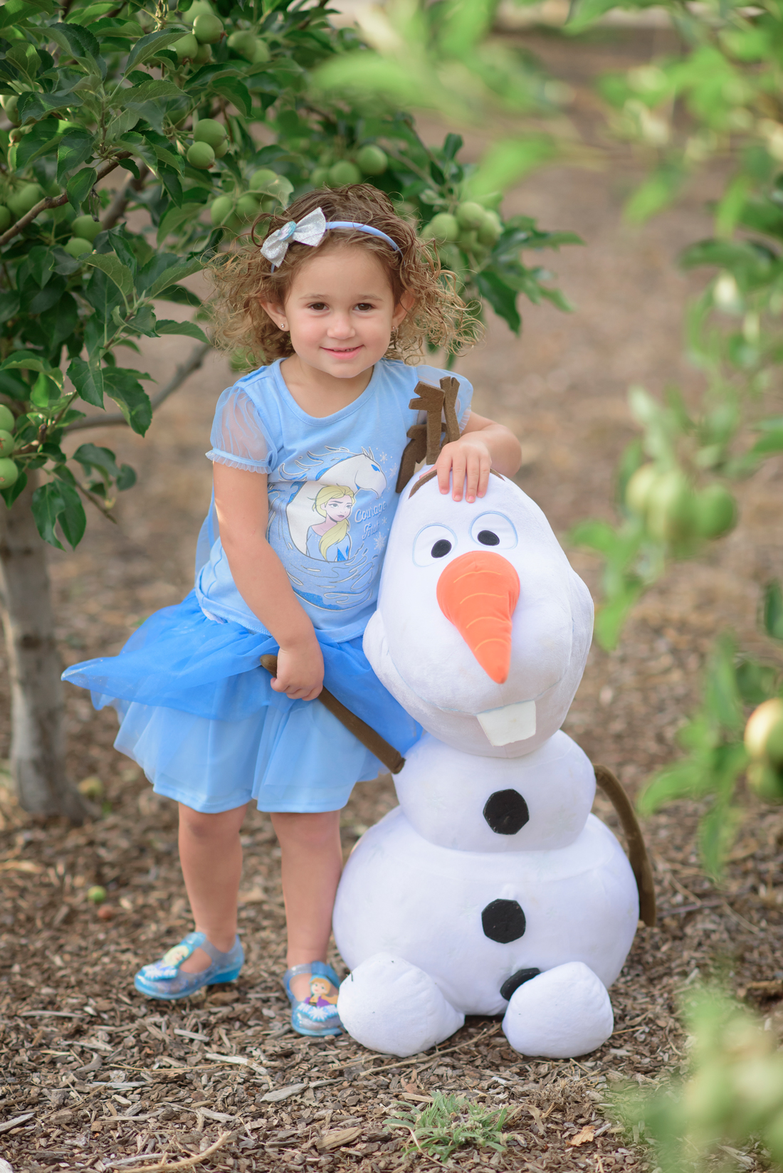 Birthday photographer Frozen Inspired Session Rocklin CA Kids Photographer