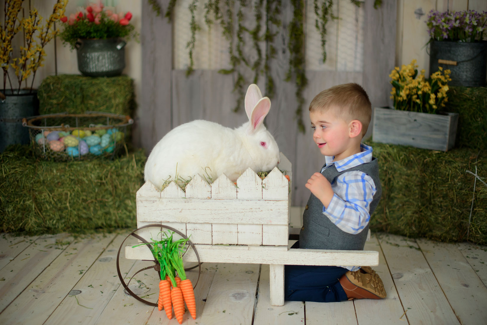 Easter mini session for babies and kids with a real bunny in Roseville, Rocklin, Lincoln, Sacramento area