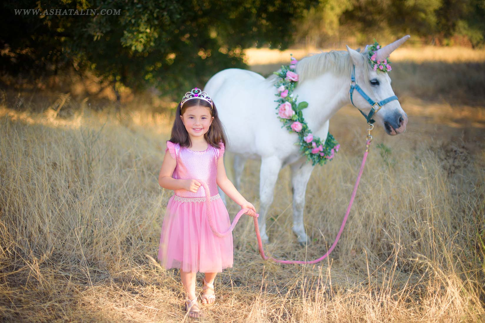 Photo Session With a Pony Unicorn